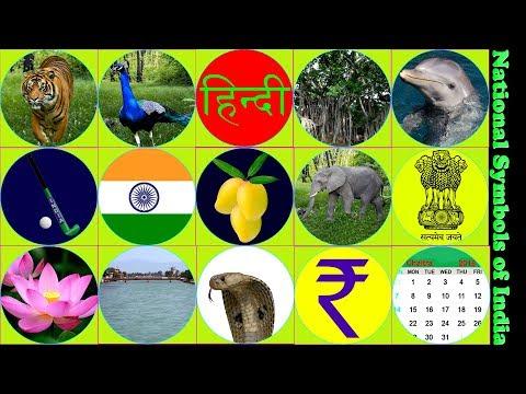 National Symbols Of India | भारत के राष्ट्रीय चिन्ह | Indian National Symbols With Pictures