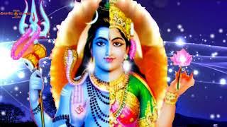 வெள்ளிமலைவாசன் /Vellimalaivasan/Devotinal Songs