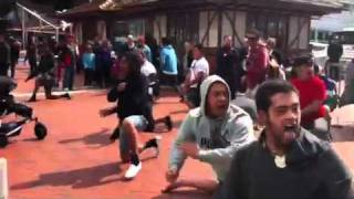 Flash Haka in Auckland CBD