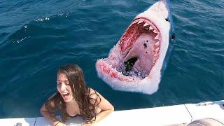 Она Соскользнула в Аквариум к Голодным Акулам - Посмотрите, Что Было Дальше