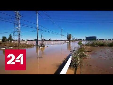 'Погода 24': тайфун