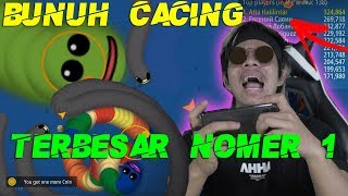 JEBAK CACING NO 1 di DUNIA! LANGSUNG JADI TOP GLOBAL Cacing Alaska...