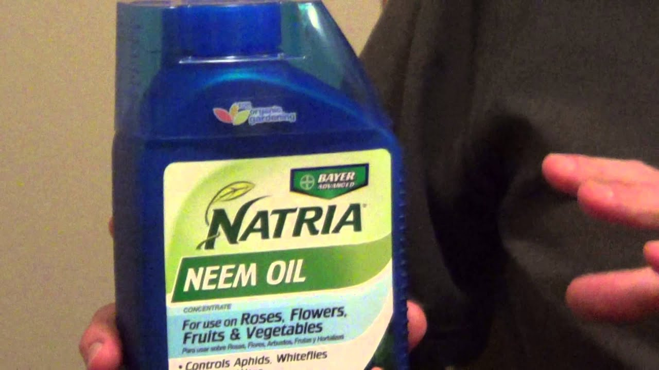 Neem Oil for Plants - Safe Insecticide for Gardens