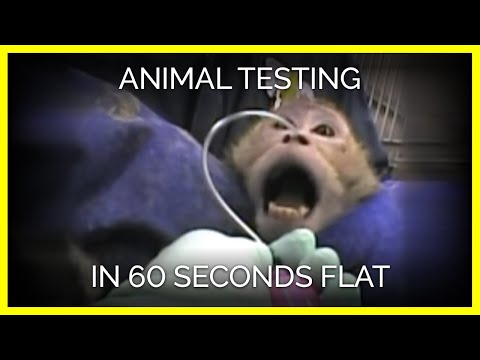 "animal testing as beneficial for research and science Animal research has played a vital part in nearly every medical breakthrough  over  ""experiments on animals have contributed greatly to scientific advances."