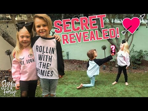 Mini COLE & SAV Dance Battle Secret Revealed!! | Slyfox Family