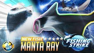【釣魚大亨 Fishing Strike】 New fish Manta Ray Mozambique Channel