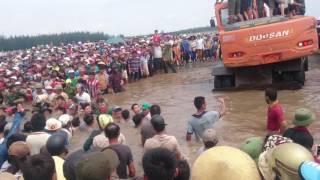 Nỗ lực cứu cá voi khổng lồ mắc cạn -  Diễn Châu-Nghệ An
