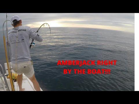 Offshore Fishing- Orange Beach, AL (Amberjack, Red Snapper, False Albacore)