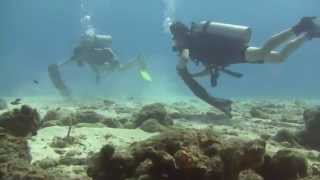 Clean Up Dive Bonaire Jan 11th, 2014