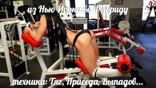 видео Тренинг и Фитнесс - Выпады(вперед, назад, шаг....)