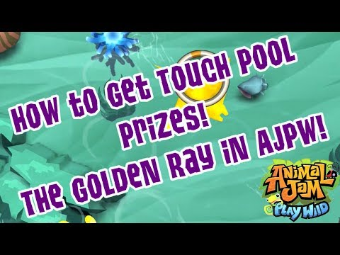 How To Get Cool Prizes in Touch Pool! | AJPW! The Golden Ray