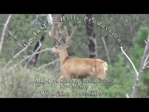 New Mexic, Lincoln County Mule Deer Hunt With The Jaramillos