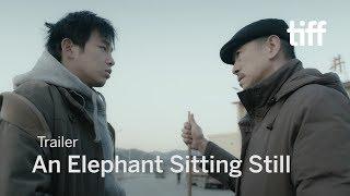 AN ELEPHANT SITTING STILL Trailer   TIFF 2018