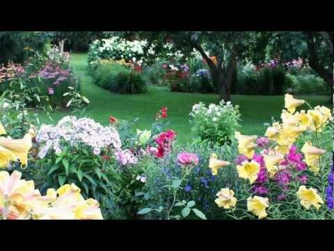 видео: Композиции в нашем саду и красивая музыка Нини Россо (hd)