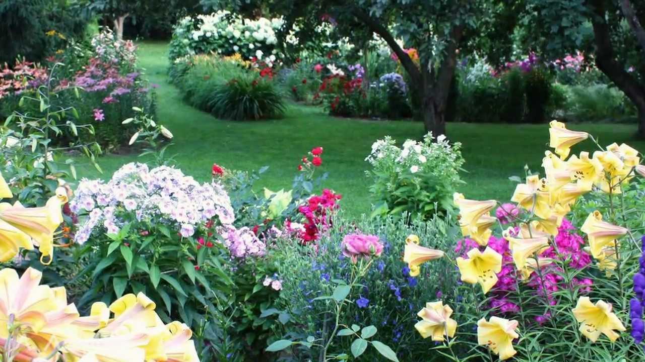 Композиции в нашем саду и красивая музыка Нини Россо (HD ...