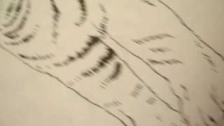 Selling book - Tiger outline