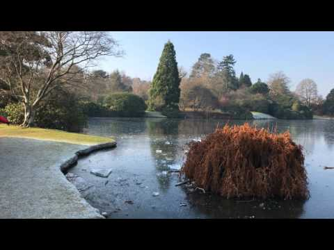 National Trust, Sheffield Park Gardens Jan2017 4k