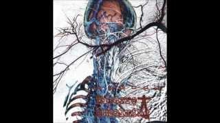 Bizarre Embalming - Agonia