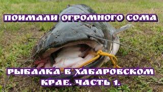 Огромный сом на перемет Рыбалка на Амуре Поселок Маяк Хабаровский край Часть 1