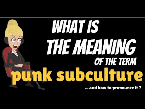 What is PUNK SUBCULTURE? What does PUNK SUBCULTURE mean? PUNK SUBCULTURE meaning & explanation