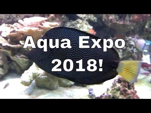 Aqua Expo 2018 hosted at Aqua Depot