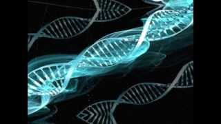 Genetic Disorder - Trauma.wmv