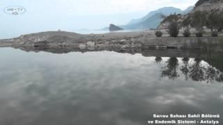 Sarısu Sahası Sahil Bölümü ve Endemik Sistemi - Antalya