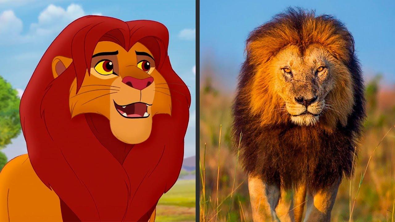 Персонажи Хранитель Лев в Реальной Жизни! Изучаем животный мир!