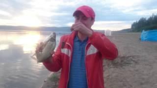 Ловля ляща на Красноярському море!!! Анашенский Сосновий Бір . 3 липня 2016 рибалка