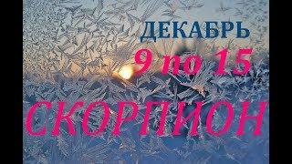СКОРПИОН. ПРОГНОЗ на НЕДЕЛЮ с 9 по 15 ДЕКАБРЯ 2019 г.