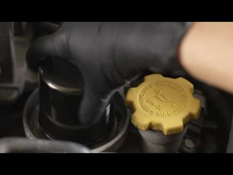 Whose Turn Is It? - Carquest Motor Oil By Advance Auto Parts