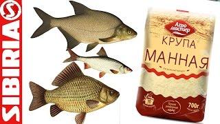 СУПЕР МАНКА для рыбалки Уловистая манка на карася, леща, сороги, плотвы и белой рыбы  Просто и бысто(Манка на рыбалку. Многие рыбы обожают манку, её приготовить очень просто и быстро, достаточно взять ее с..., 2016-06-02T07:00:01.000Z)