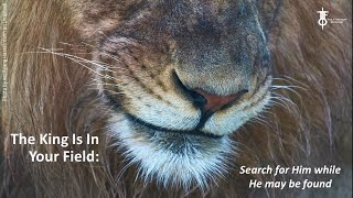 The King Is In Your Field: Seek Him While He May Be Found. The Flight Deck 8-20-2020