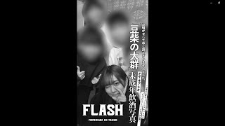 豆柴の大群「FLASH」LYRiC ViDEO