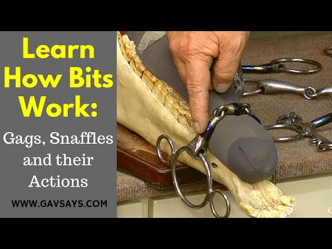 How Bits Work - Gags, Snaffles & Their Actions
