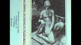 Vidna Obmana - Dazzling Array 1