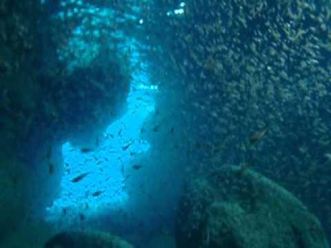 青の洞窟とハタンポの群れ