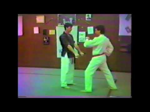 Self Defense group I opposite hand pt 2 back and horse stance