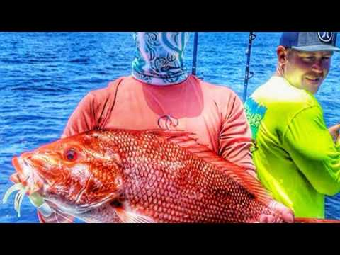 SALTY SEAMEN Offshore fishing Galveston Texas