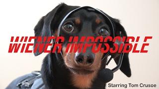 "Video Tom Crusoe in ""Wiener Impossible!"" download MP3, 3GP, MP4, WEBM, AVI, FLV September 2017"