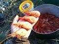 Как поймать креветку в море.