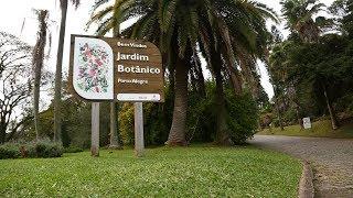Reportagem sobre o aniversário de 61 anos do Jardim Botânico