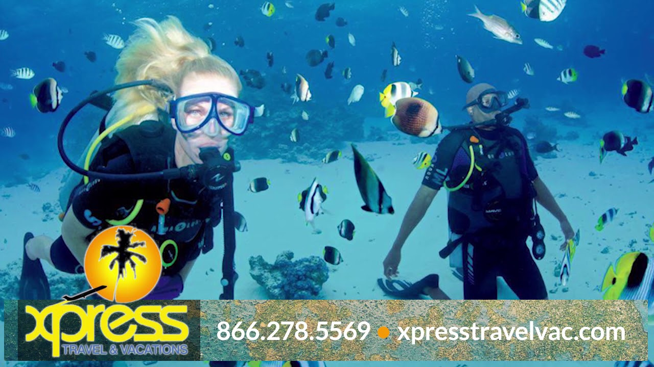 Xpress Travel & Vacation LLC   Travel Agents in Pooler