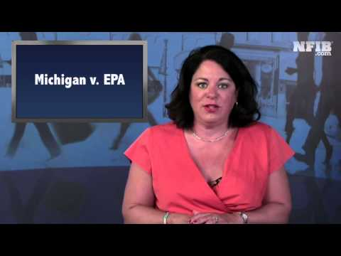 Small Biz Reaction to SCOTUS Michigan v EPA Ruling | NFIB