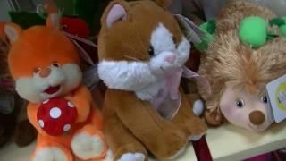 ВЛОГ Покупаем мягкую игрушку Котенка и Шапку