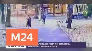 Мужчина чуть не убил пенсионерку, которая кормила кошек - Москва 24