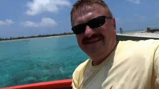 Морская черепаха кольцевания остров Мистери-Айленд страна Вануату в Океании