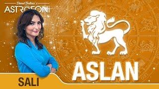 ASLAN günlük yorumu 9 Şubat 2016 Salı