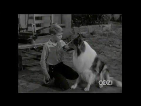 "Lassie - Episode #325 - ""The Agreement"" - Season 10, Ep. 2 - 10/03/1963"