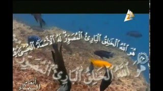 الحلقة المميزه لفضيلة الشيخ رافت حسين مع القران الكريم فى برنامج انغام السماء